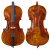 手作りの本物のトラの紋様は級を試験してチェロの初心者の児童の楽器の1/2チェロを演奏します。