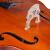 シヤチャチャネ(Saysn)専門チェロ大人の子供が手作業で試験級の演奏を練習します。